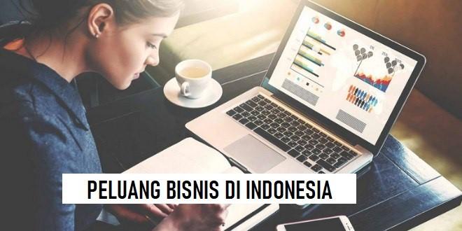BAGAIMANA PELUANG BISNIS DI INDONESIA? | Cpevaristovalle.com